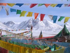Lungta_Tibet_ASIA